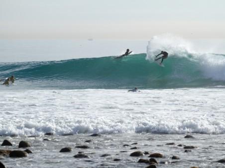 ricon-surfing